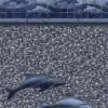 Marine Tile - Blue Seabrook Bottom