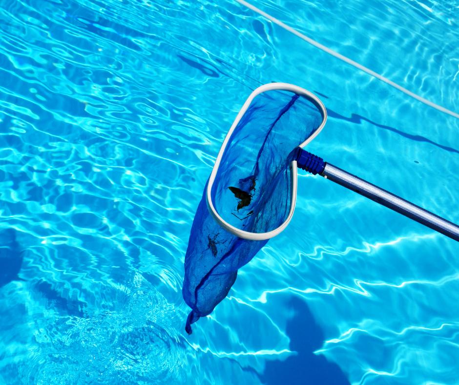 basic_pool_care